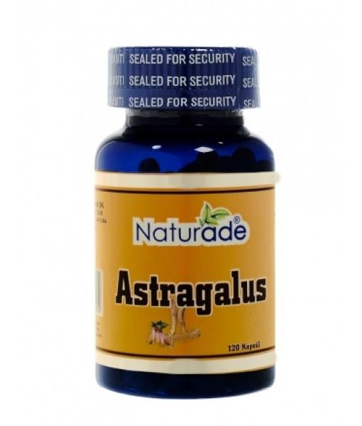 astragalus-120-kapsul-naturade